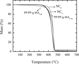 Thermal degradation kinetics of PP/OMMT nanocomposites with