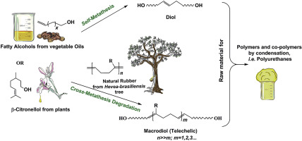 Metathesis reaction from bio-based resources: Synthesis of diols and