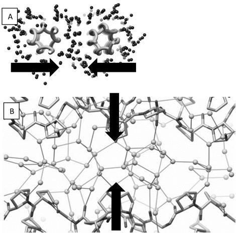Dsc Investigation Of Bovine Hide Collagen At Varying Degrees Of