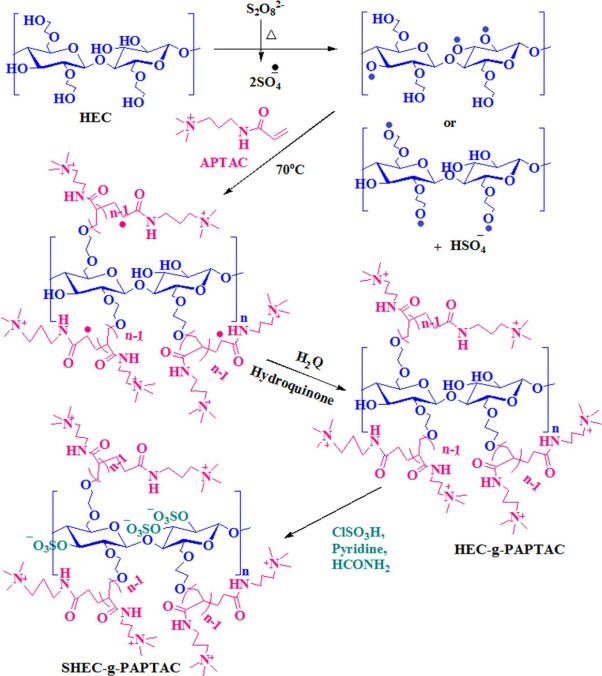 2.2.2. Preparation of sulfated hydroxyethyl cellulose-graft-poly(APTAC)  (SHEC-g-PAPTAC) by sulfation