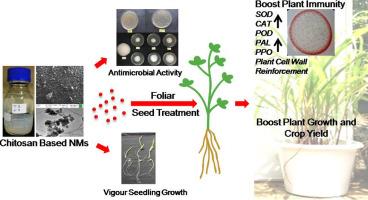 Engineered chitosan based nanomaterials: Bioactivities, mechanisms