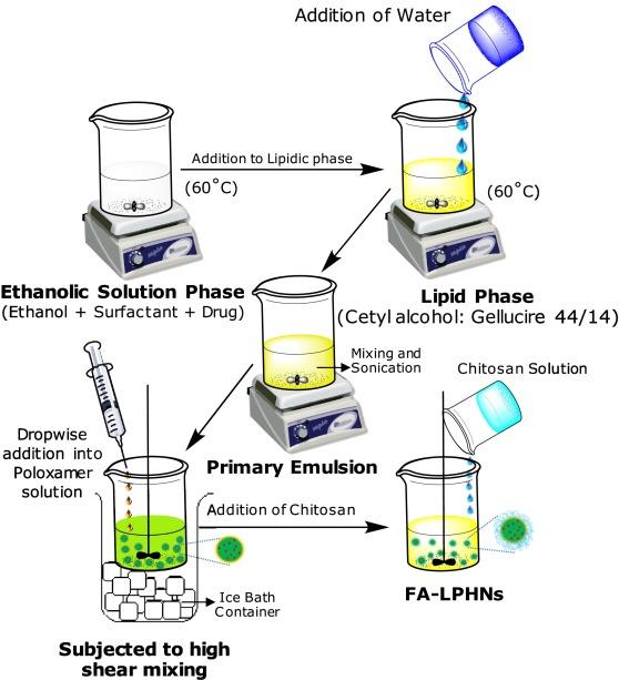 Chitosan-tailored lipidic nanoconstructs of Fusidic acid as