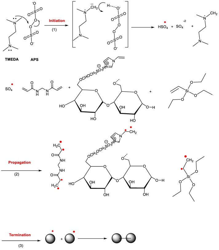 Synthesis Of Starch Functionalized Sulfonic Acid Co Imidazolium