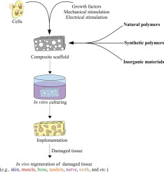 Scaffolding polymeric biomaterials: Are naturally occurring