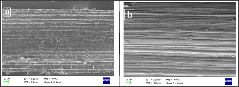 Characterization of raw and alkali treated new natural cellulosic