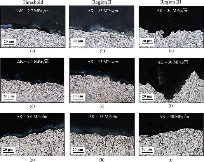 Fatigue crack growth behavior and microstructural mechanisms in Ti
