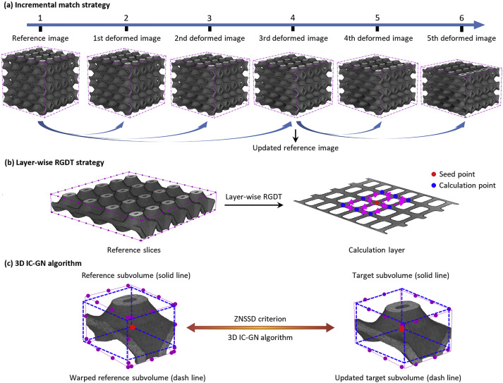 Mapping internal deformation fields in 3D printed porous