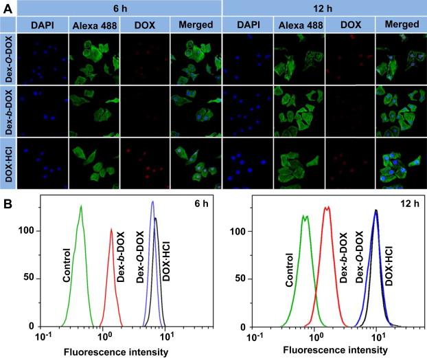 Versatile preparation of intracellular-acidity-sensitive