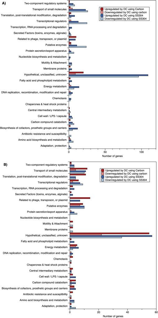 Sensitizing Pseudomonas aeruginosa to antibiotics by electrochemical