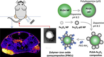 Polymer–iron oxide composite nanoparticles for EPR