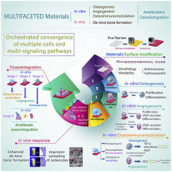 A multifaceted coating on titanium dictates osteoimmunomodulation