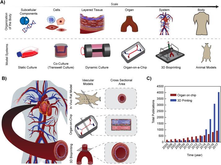 Emerging trends in multiscale modeling of vascular