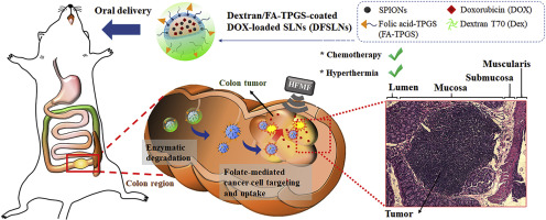 Hierarchically Targetable Polysaccharide Coated Solid Lipid Nanoparticles As An Oral Chemo Thermotherapy Delivery System For Local Treatment Of Colon Cancer Sciencedirect
