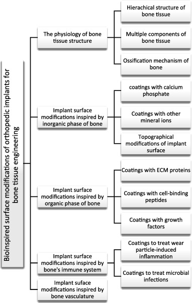 Bioinspired surface modification of orthopedic implants for