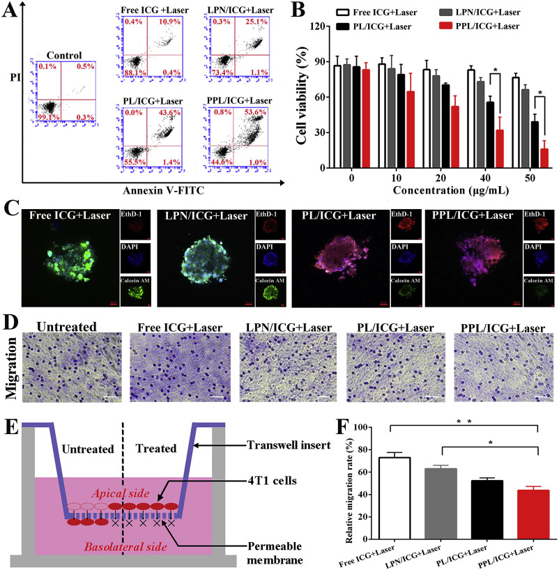 Laser-triggered polymeric lipoproteins for precision tumor