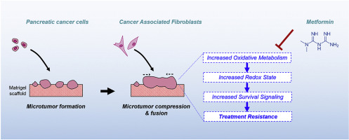 Modulation of redox metabolism negates cancer-associated fibroblasts
