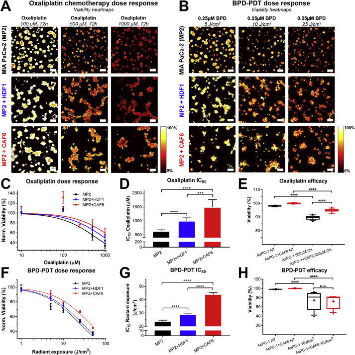 Modulation of redox metabolism negates cancer-associated