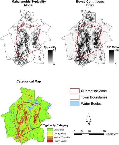 asian longhorned beetle distribution