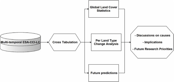 Insights on the historical and emerging global land cover