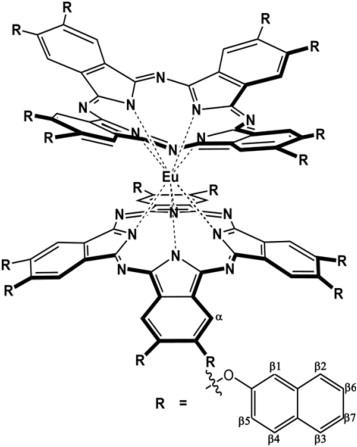 Flexible Ambipolar Organic Field Effect Transistors Based On The