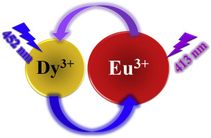 Observation of two-way multichannel interaction among Dy and Eu ions