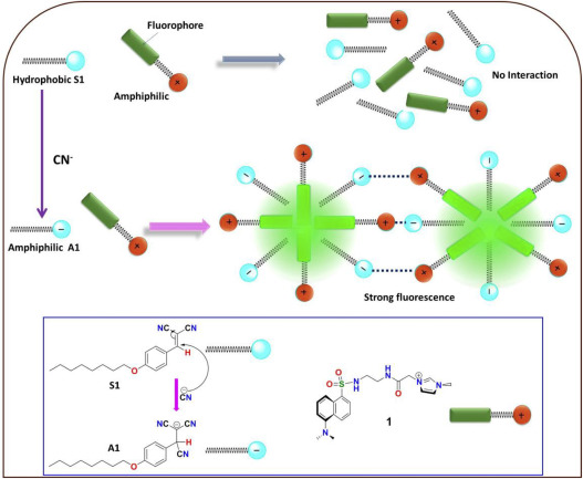TURN-ON fluorescence detection of cyanide using an ensemble