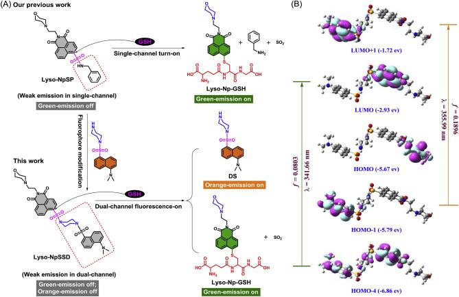 Naphthalimide-sulfonamide fused dansyl-sulfonamide fluorescent probe
