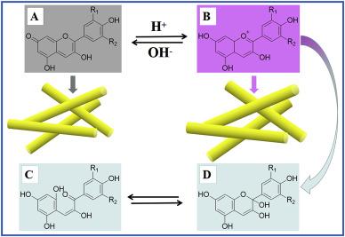 Acid/base reversible allochroic anthocyanin/palygorskite hybrid