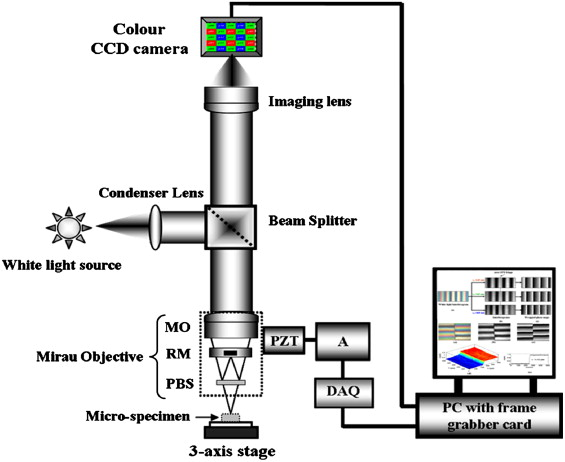 Schematic Of The White Light Microscopic Interferometric System: MO,  Microscopic Objective; RM, Reference Mirror; PBS, Plate Beam Splitter; A,  Amplifier; ...