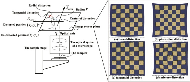 Generic distortion model for metrology under optical microscopes