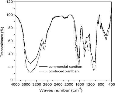Characterization of xanthan gum produced from sugar cane broth