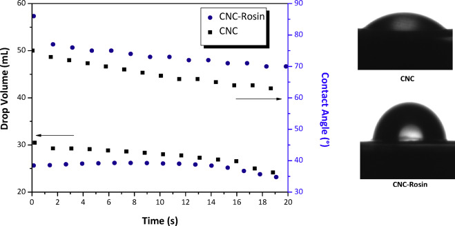 Surface grafting of cellulose nanocrystals with natural