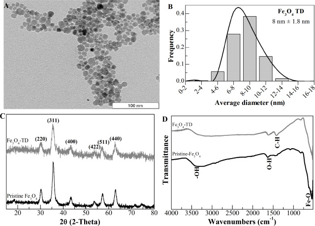 Thermal And Magnetic Properties Of Chitosan Iron Oxide Nanoparticles