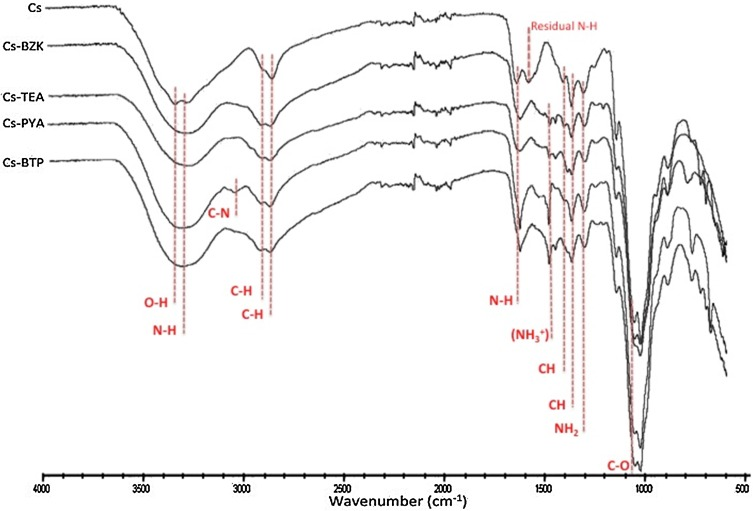 Original Method For Synthesis Of Chitosan Based Antimicrobial Agent