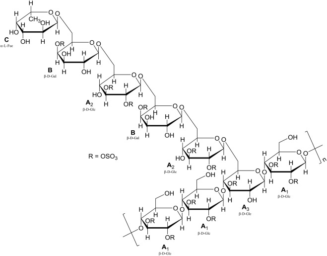 Characterization Of A Sulfated Galactoglucan From Antrodia