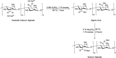 Multistage extraction and purification of waste Sargassum