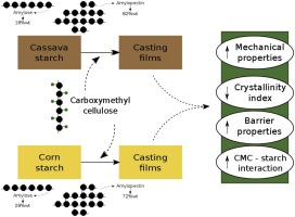 Corn and cassava starch with carboxymethyl cellulose films