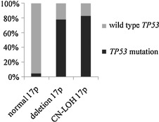 Copy number neutral loss of heterozygosity at 17p and homozygous