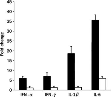 Immune responses of poultry to Newcastle disease virus