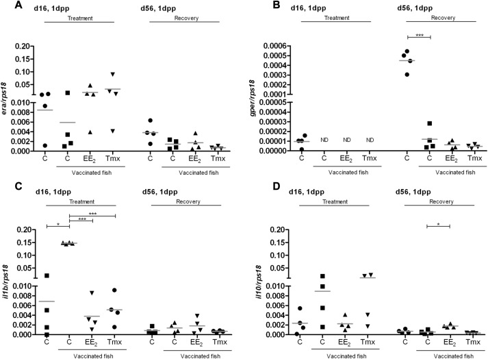 Tamoxifen persistently disrupts the humoral adaptive immune