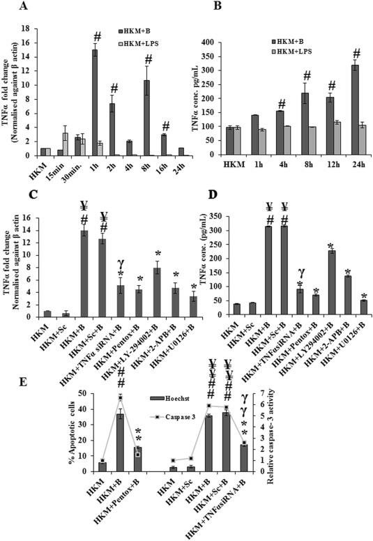 Aeromonas hydrophila-induced alterations in cytosolic