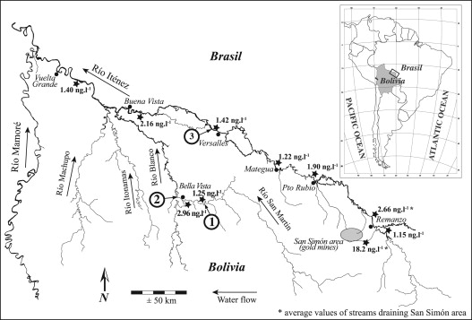 Mercury Bioaccumulation Patterns In Fish From The Itnez River Basin