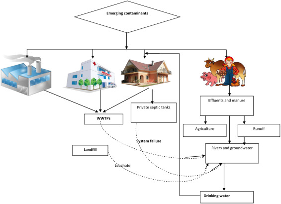 Removal of emerging contaminants from the environment by