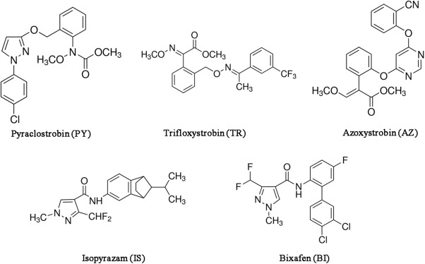 Single and mixture toxicity of strobilurin and SDHI