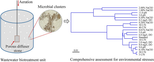 1 s2.0 S0147651318305943 fx1 comprehensive assessment of microbial aggregation characteristics of