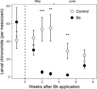Adverse effects of mosquito control using Bacillus