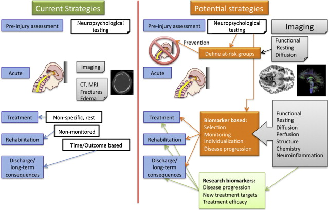 The young brain and concussion: Imaging as a biomarker for diagnosis