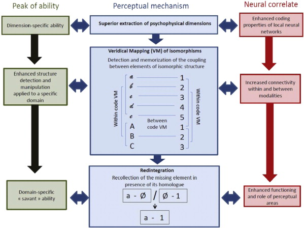 Veridical mapping in the development of exceptional autistic