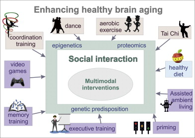 Maintaining older brain functionality: A targeted review