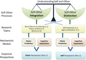 Self–other integration and distinction in schizophrenia: A